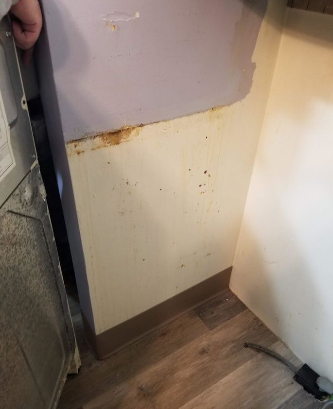 Grime discovered in the kitchen on move-in day.